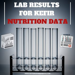 Lab Results For Kefir Nutrition Data