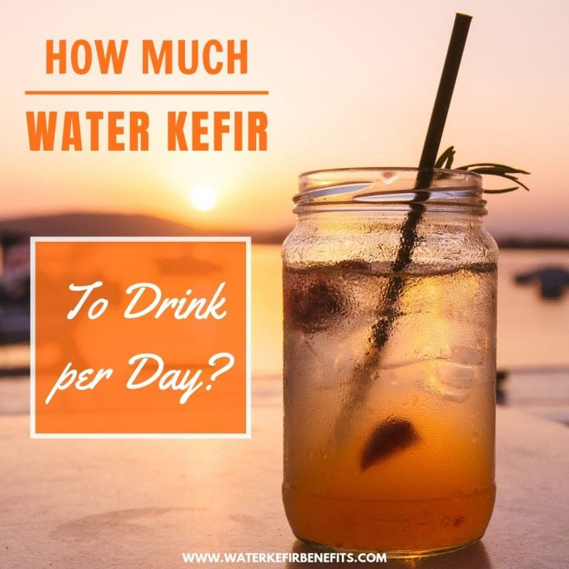Water Kefir Dosage How Much Water Kefir to Drink per Day