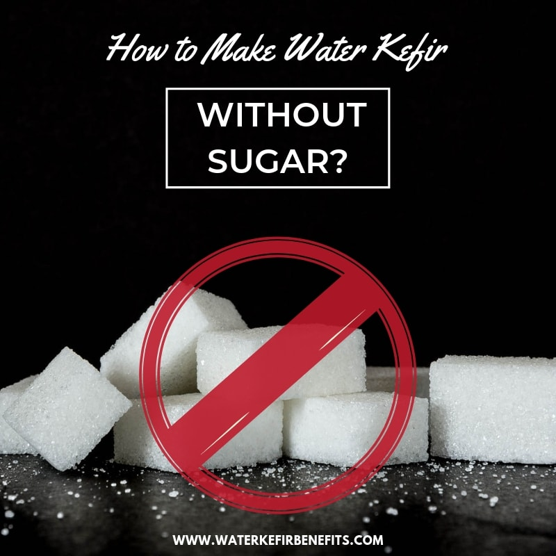 How to Make Water Kefir Without Sugar (Best Substitutes for Sugar, Recipes & More)