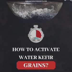How to Activate Water Kefir Grains