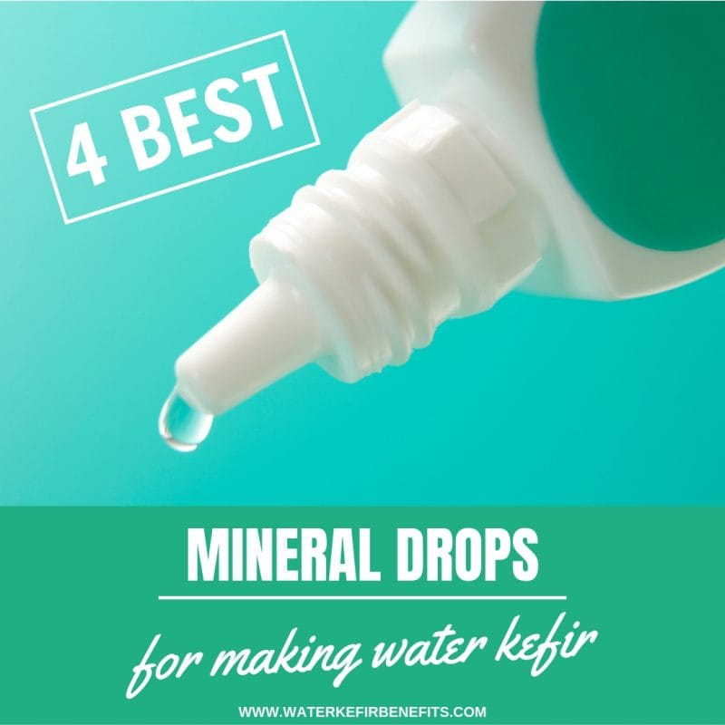 4 Best Mineral Drops For Making Water Kefir Best Way To Multiply Water Kefir Grains.