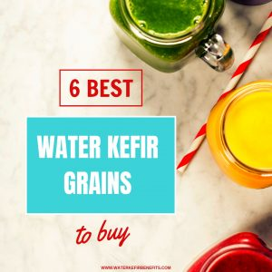 6 Best Water Kefir Grains to Buy.
