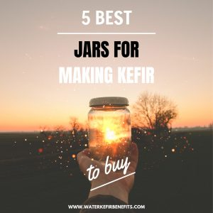 5 Best Jars for Making Kefir to Buy