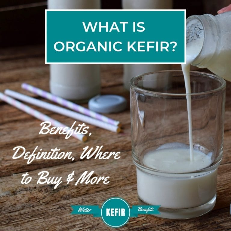 What is Organic Kefir (Benefits, Definition, Where to Buy & More)